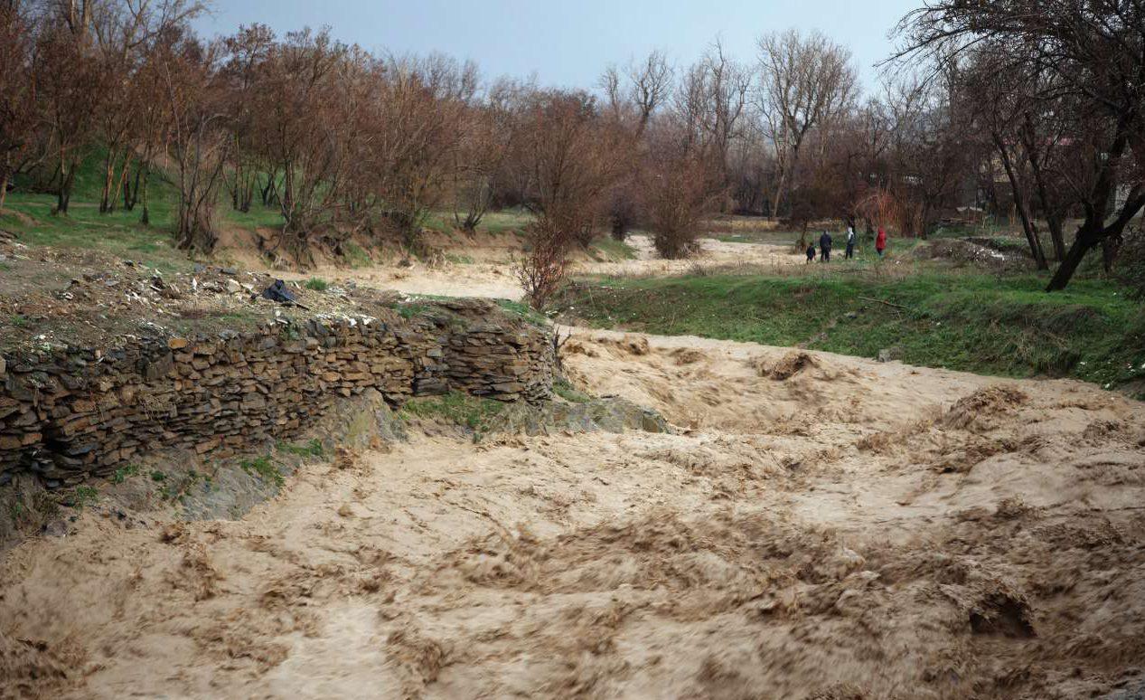 ۳۴۰ میلیارد ریال خسارت سیل به حوزه کشاورزی استان مرکزی اختصاص یافت
