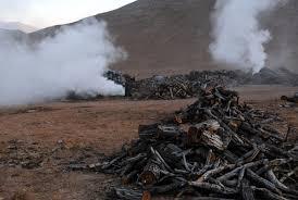 امحاء کوره های ذغالی غیر مجاز در اراضی جنگلی شهرستان ممسنی