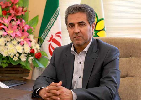 معاون گردشگری وزارت میراث فرهنگی، گردشگری و صنایع دستی از شهردار شیراز تقدیر کرد