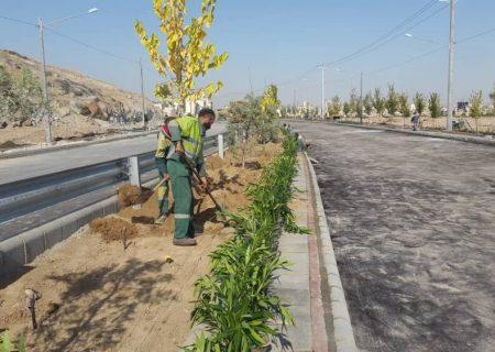 شعار سازمان زیبا منظر وفضای سبز شهرداری، هر شیرازی یک درخت