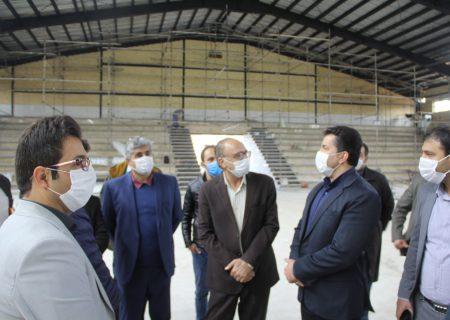 از میزبانی مسابقات ورزشی در شیراز حمایت می کنیم