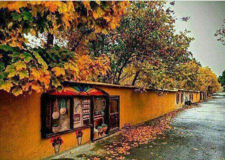 برای اولین بار در تاریخ شهرداری شیراز، احیای باغات قصردشت شیراز با کاشت درخت