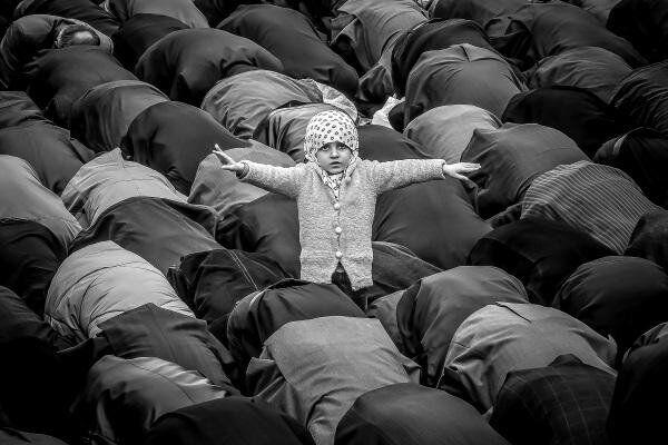 نشان زرین جشنواره جهانی نرماندی ،در دست عکاس ایرانی