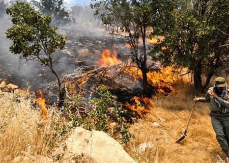 دستگیری عاملان آتشسوزی ارتفاعات جنگلی فیجان شهرستان ارسنجان